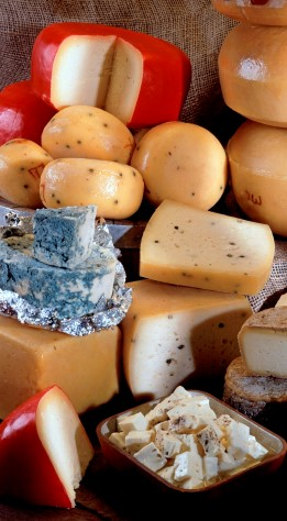 AT_Case_iStock_Cheese_Medium[2].jpg