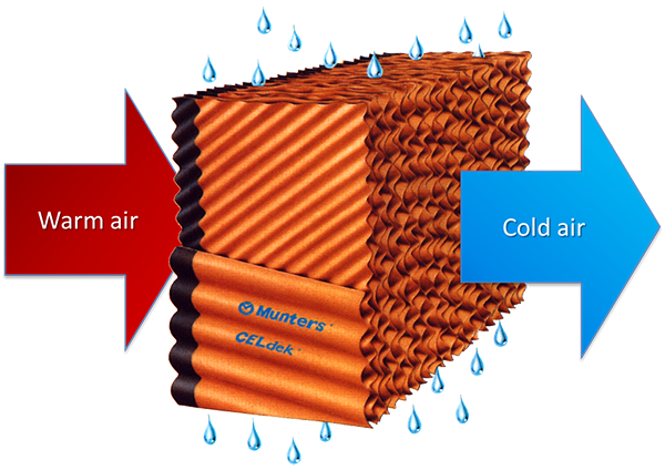 Direct Evaporative Cooling illustration