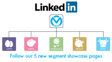 Showcase pages on Linked In