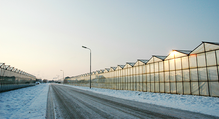 Greenhouse in cold climate