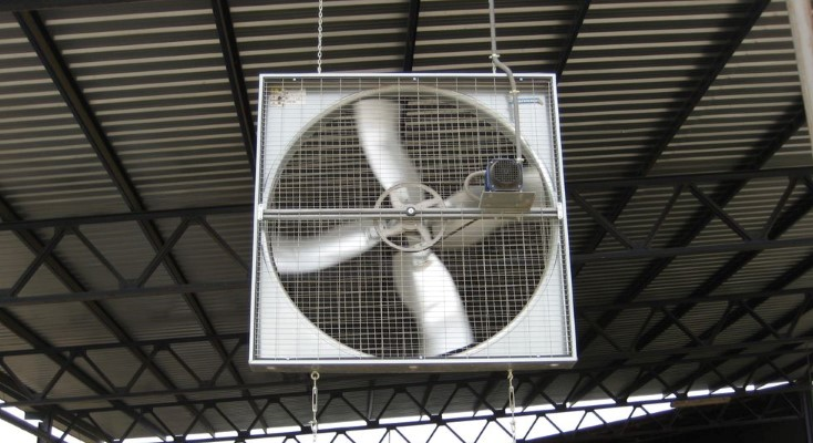 Circulation fan at a dairy farm